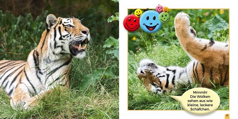 Neues Kinderbuch über Tiger – Tiergarten Schönbrunn